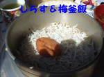 2007_0307はる0051-1.JPG