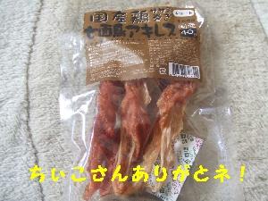 2007_0601 はる0051.jpg