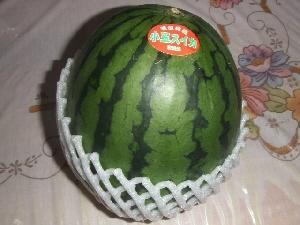 2007_0613 はる0096.jpg