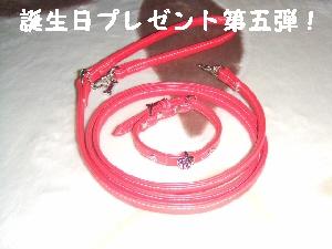 2007_0712 はる0059.jpg