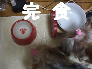 2007_0720 はる0111.jpg