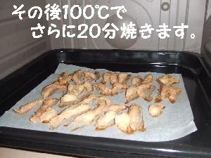 2007_1210 はる0061.jpg