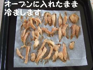 2007_1210 はる0062.jpg