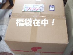2007_1218 はる0045.jpg