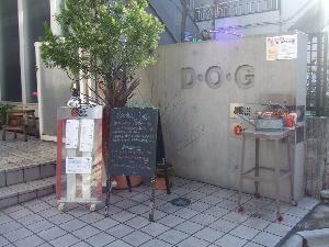 2008_0106 はる0047.jpg
