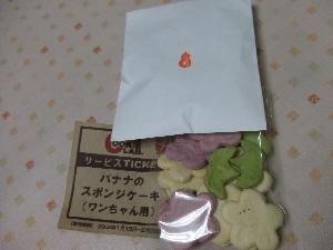 2008_0106 はる0072.jpg