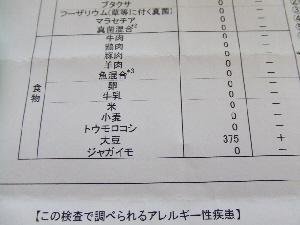 2008_0131 はる0048.jpg