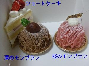 2008_0328 はる0064.jpg