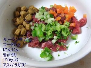 2008_0401 はる0035.jpg