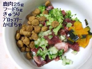 2008_0403 はる0032.jpg