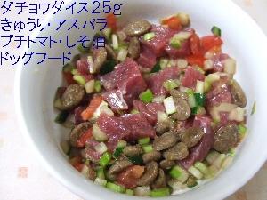 2008_0713 はる0026.jpg