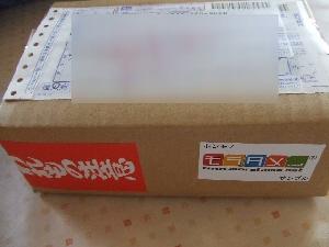 2008_0819 はる0048.jpg
