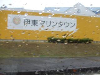 2008_1125 はる0022.jpg