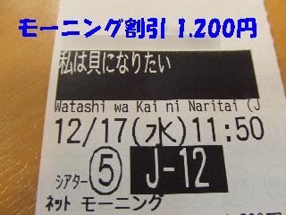 2008_1218 はる0012.jpg