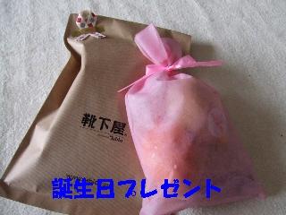 2008_1222 はる0015.jpg