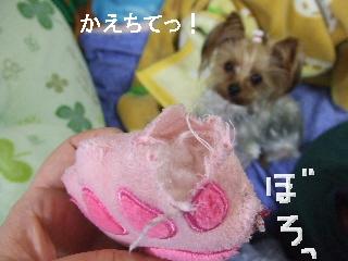 2009_0309 はる0001.jpg