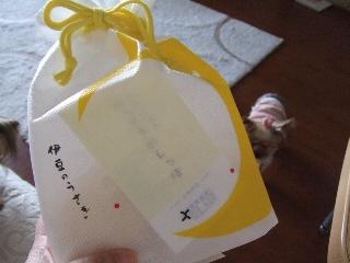 2009_0327 はる0043.jpg