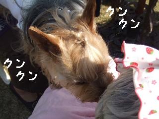 2009_0408 はる0054.jpg