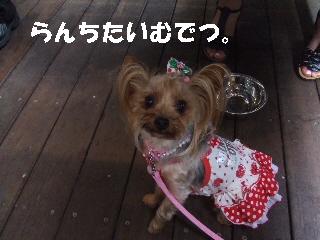 2009_0705 13.jpg