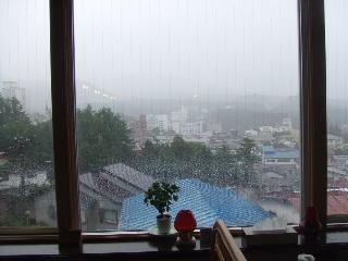 2009_0812 はる0044.jpg