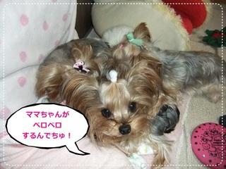 2011_11060004.JPG
