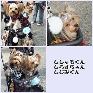 2012_0117page.jpg