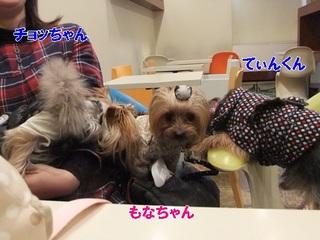 2012_02020003.JPG