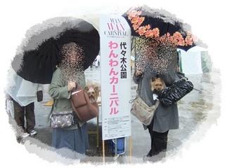 2012_04190002.JPG