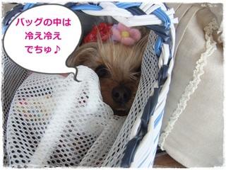 2012_07190101.JPG