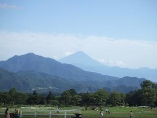 清泉寮からの富士山.jpg